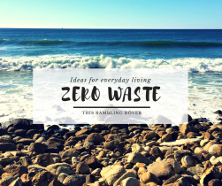 Zero Waste Ideas for the Everyday Living